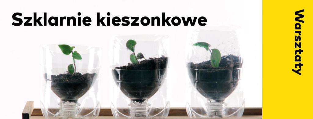 """Warsztaty """"Siej i Miej. Szklarnia kieszonkowa"""" z ID Kielce (źródło: materiały prasowe organizatora)"""