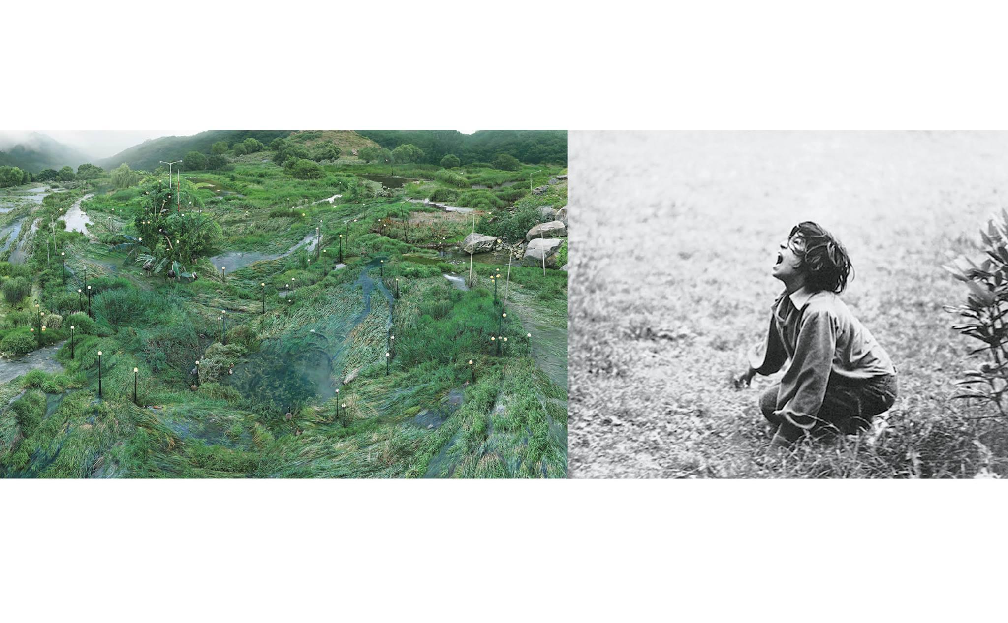 """Won Seoung Won, """"Sieć informatyczna z trawy wodnej"""" , 2017, c-print; Anna Panek, """"Dzikie Życie"""", 2017, kolaż filmowy dzięki uprzejmości artystek (źródło: materiały prasowe organizatora)"""