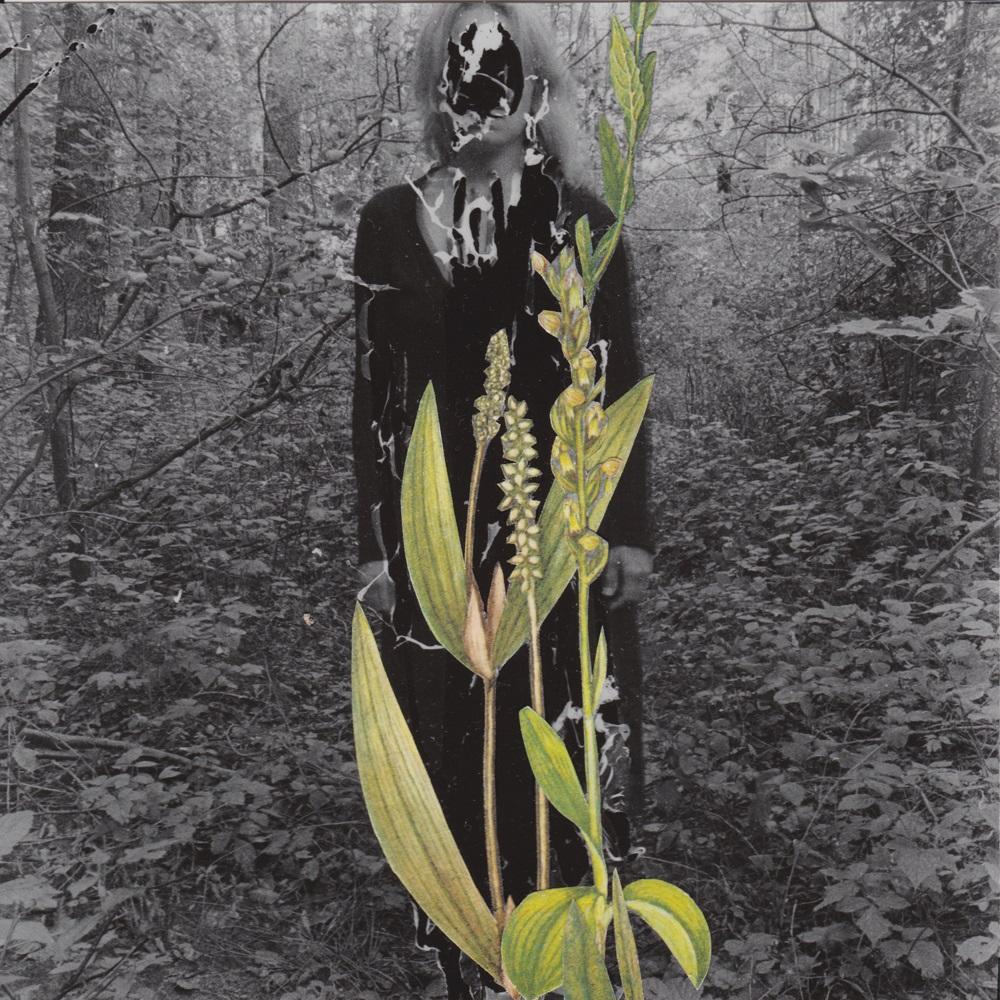 "Magda Hueckel, ""Primavera"", 2016 (źródło: materiały prasowe organizatora)"