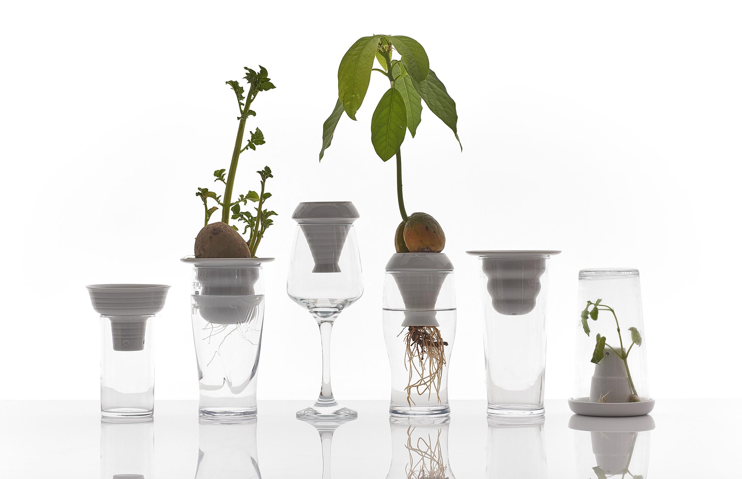 PLANTATION, proj. Alicja Patanowska, fot. S. Deleu (źródło: materiały prasowe organizatora)