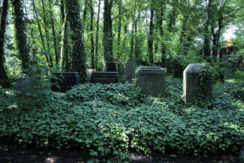 Cmentarz żydowskie, wikimedia commons (źródło: materiały prasowe organizatora)