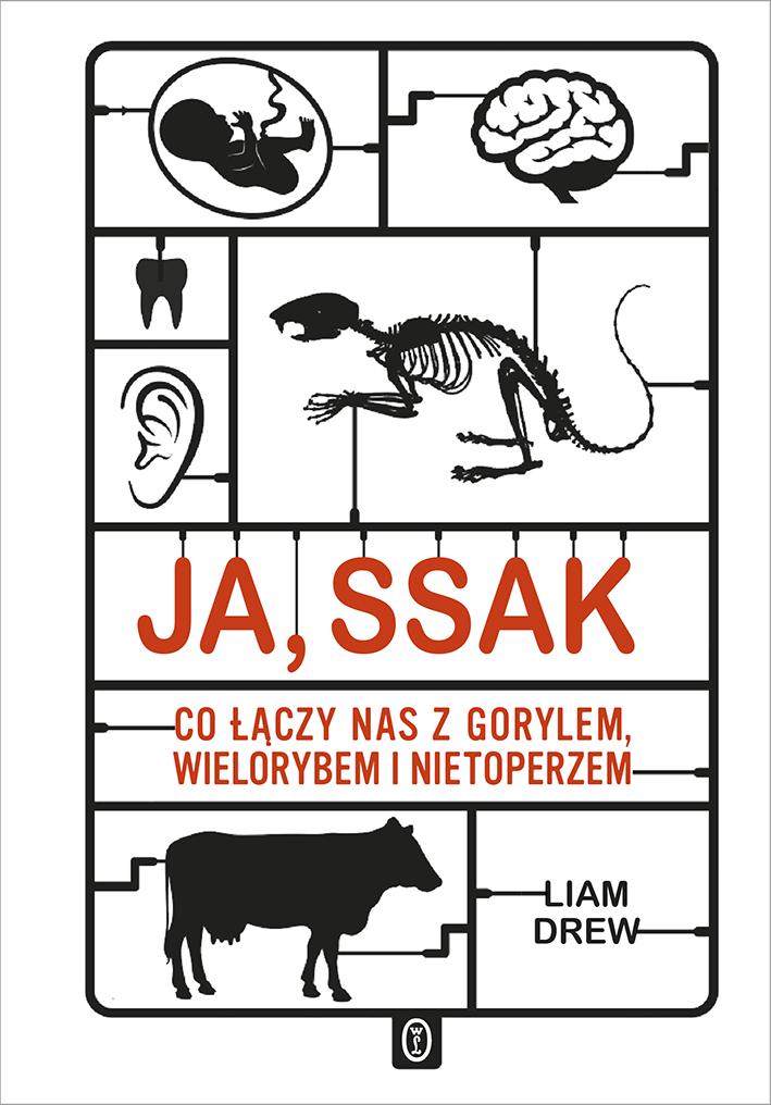 """Liam Drew, """"Ja, ssak. Co łączy nas z gorylem, wielorybem i nietoperzem"""" (źródło: materiały prasowe wydawnictwa)"""