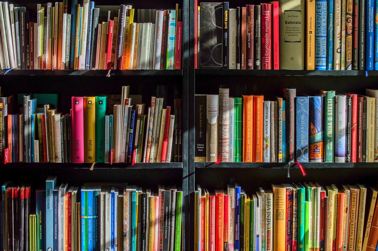 Gdzie oddać używane książki?