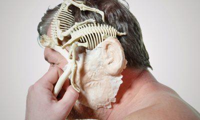 """""""Ewolucja"""", fot. Bogdan Rząd (źródło: materiały prasowe)"""