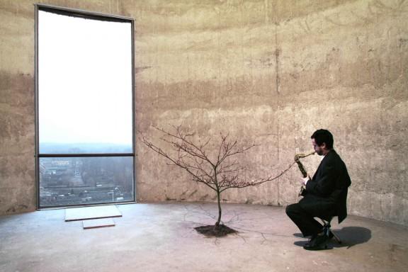 Massimo Bartolini, Ballad (Concert for a Tree), 2001, performance