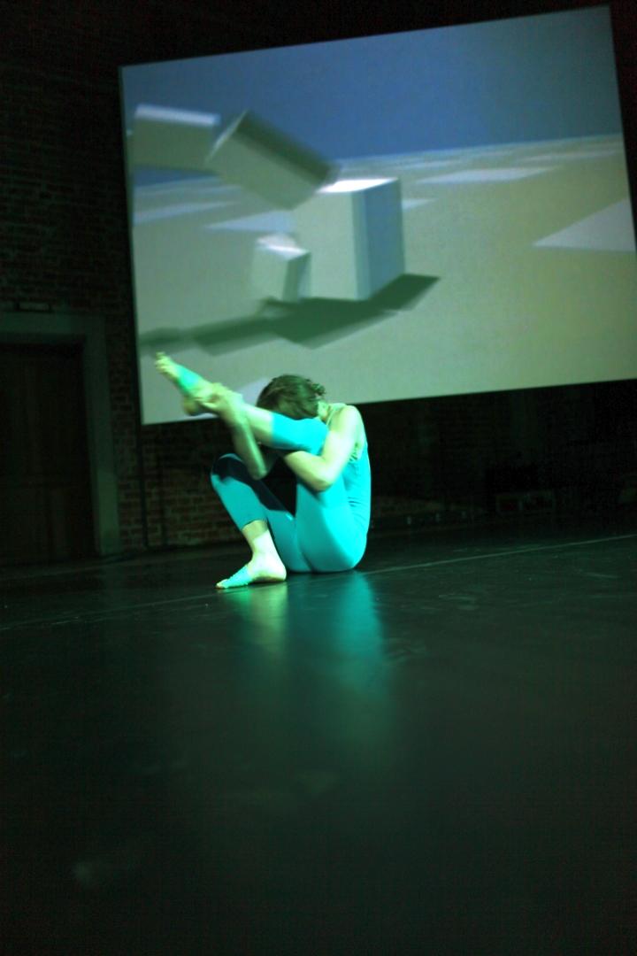 WRO 2011 Biennale, Megan Daalder, Tribute to Karl Sims, photo by Katarzyna Pałetko (11)
