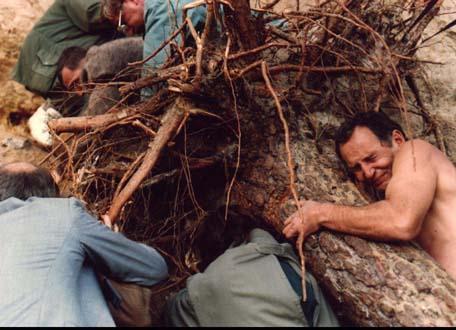 """Reż. Grzegorz Królikiewicz """"Drzewa"""", 1995 - kadr, materiał udostępniony przez organizatora"""