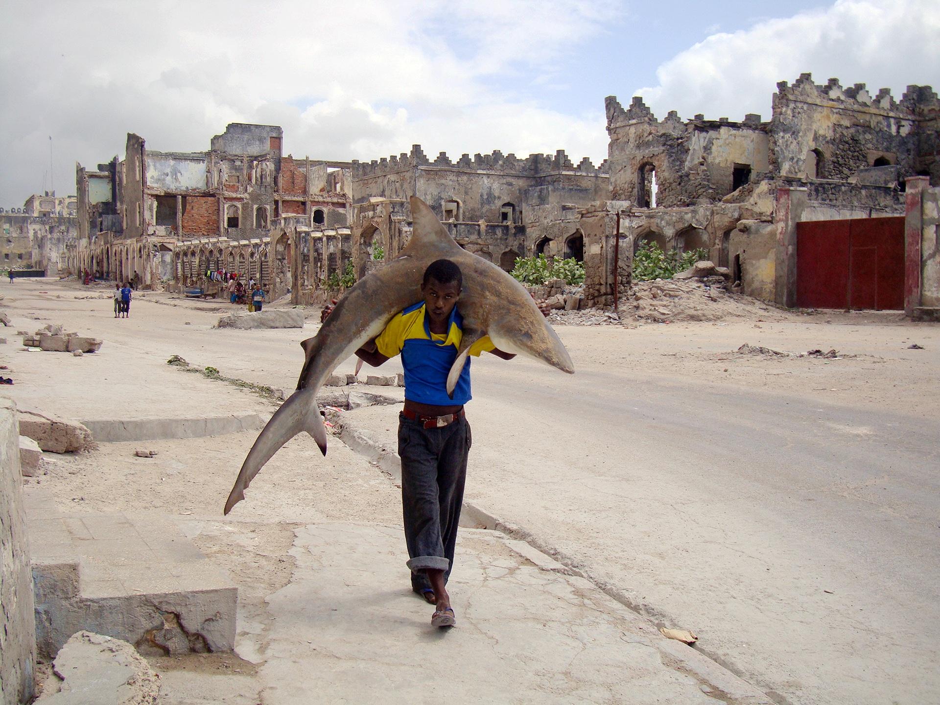 1. nagroda w kategorii Życie codzienne - zdjęcie pojedyncze: Feisal Omar, Somalia, Reuters, Mężczyzna niosący rekina na ulicy w Mogadiuszu, Somalia, 23 września'