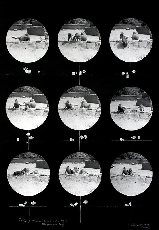 Dora Maurer, Studies of Minimal Movements VI, 1972 (2011) fotografia, pastel, fot. archiwum artystki (źródło: materiały organizatora)