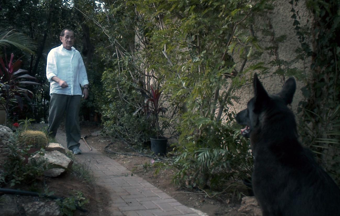 """Kadr z filmu """"Nechama"""" (źródło: materiały prasowe)"""