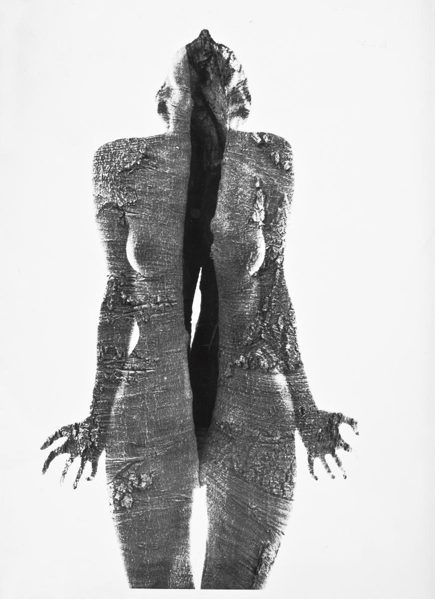 Uwikłane w płeć / Subjects of Gender and Desire, Wacław Nowak, Anty-war poster, 1970 (źródło: materiały prasowe)