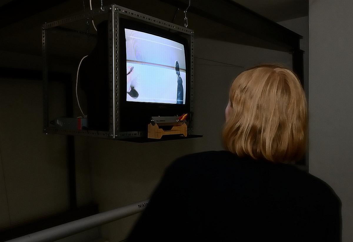 Niklas Roy, Ping, 2011. Zmienne-Stałe-Błądzące. AC/DC/IT, wystawa WRO Art Center, fot. Z. Kupisz