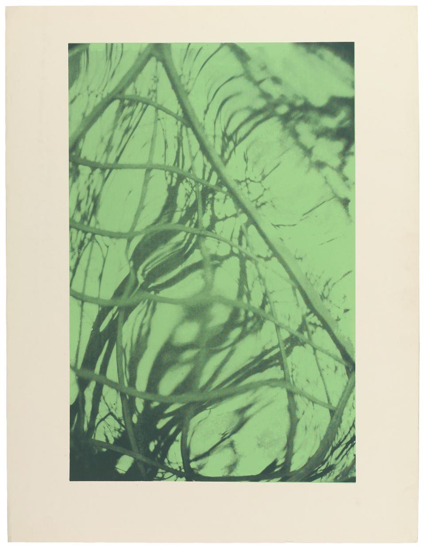 """Witold Skulicz, """"Altana II"""", serigrafia, własność rodziny artysty (źródło: materiały prasowe)"""