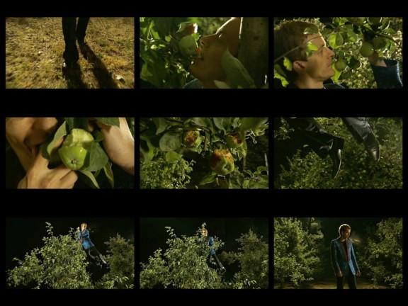 Oskar Dawicki, Drzewo wiadomości, 2008 (źródło: materiały prasowe organizatora)