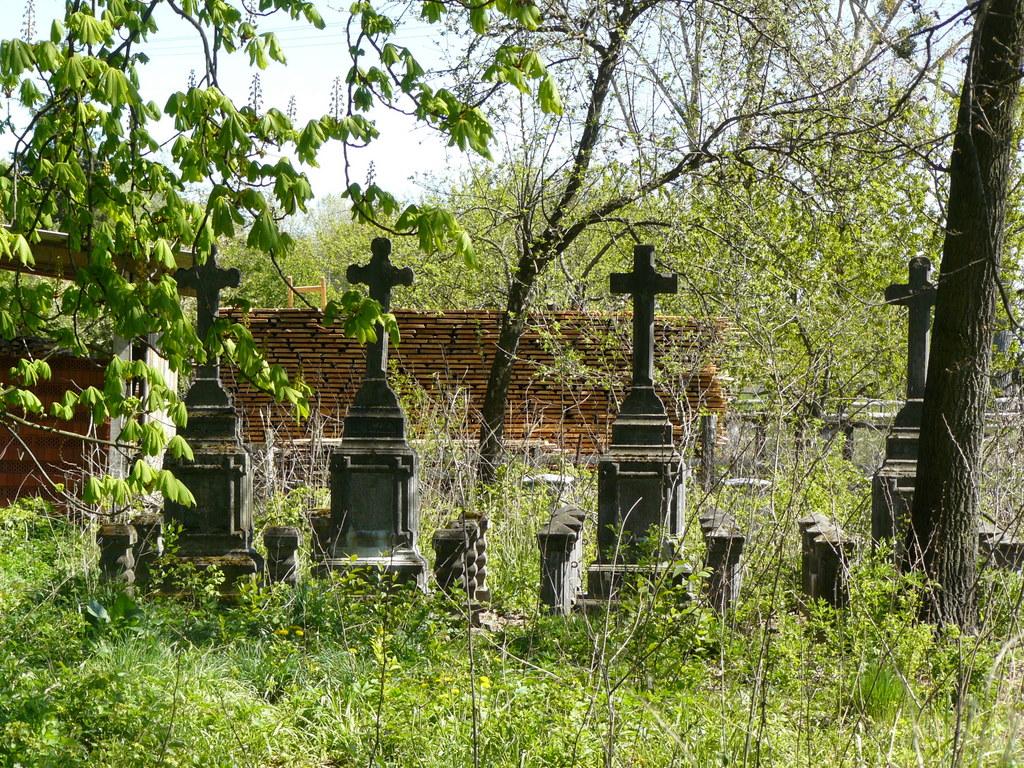 Opuszczony cmentarz ewangelicki w Secyminie, fot. P. Matwiejczuk (źródło: materiały prasowe)