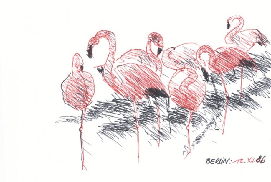 Andrzej Wajda: Flamingi – berlińskie ZOO (źródło: materiały prasowe organizatora)