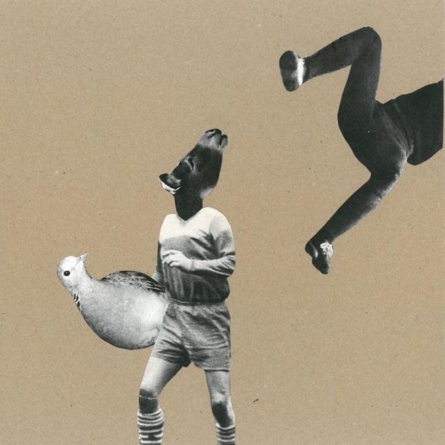 """Basia Bańda, """"Walka o gołębia. Kiedyś znalazłam gołębia i nie chciałam go nikomu oddać"""" (źródło: materiały prasowe organizatora)"""