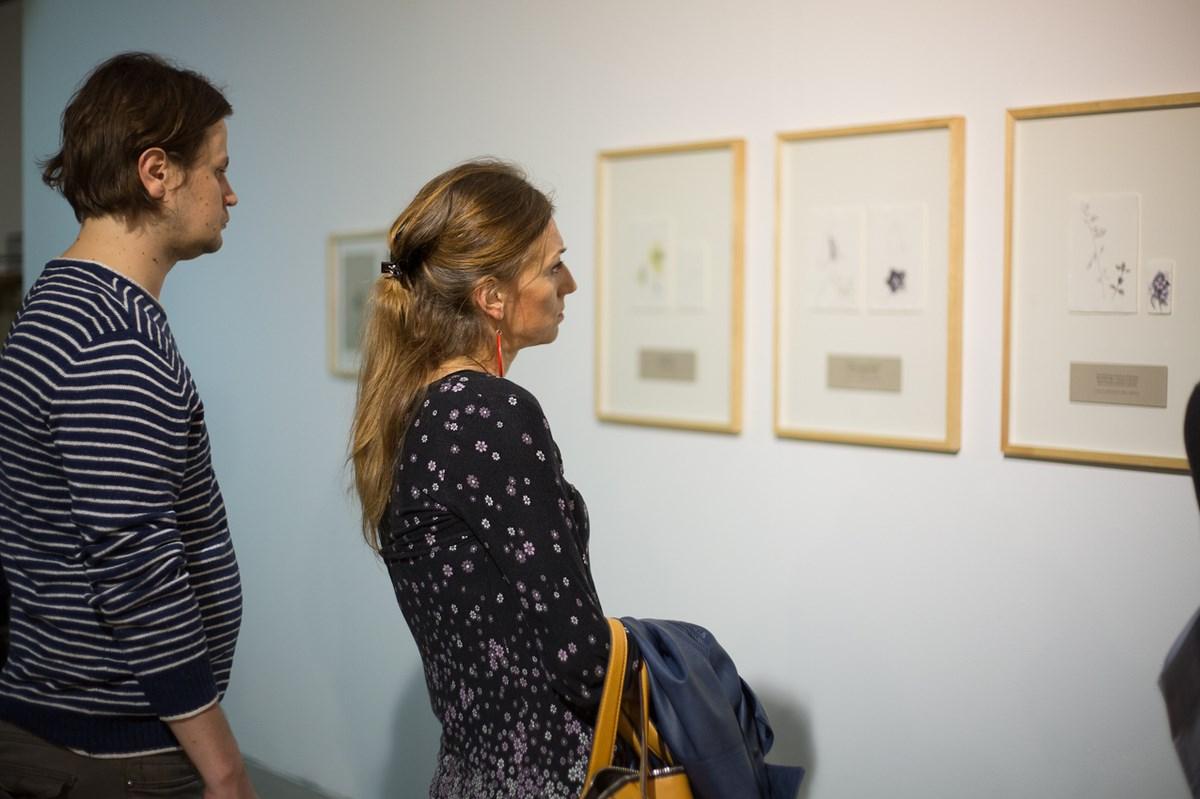 """Wystawa """"O powstawaniu i ginięciu"""", wernisaż, Galeria BWA w Katowicach, fot. Barbara Kubska (źródło: materiały prasowe organizatora)"""