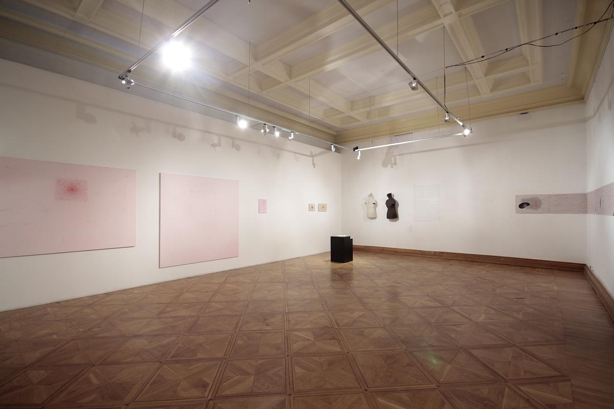 """""""Cielesne kontinuum"""", widok wystawy, 13 muz Szczecin, fot. Piotr Miazga (źródło: materiały prasowe organizatora)"""