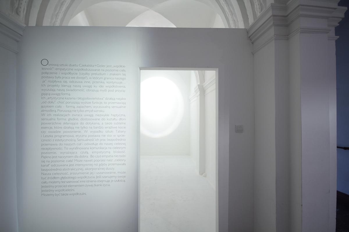"""Czekalska+Golec, """"Implant"""", widok wystawy""""Cielesne kontinuum"""", 13 muz Szczecin, fot. Piotr Miazga (źródło: materiały prasowe organizatora)"""