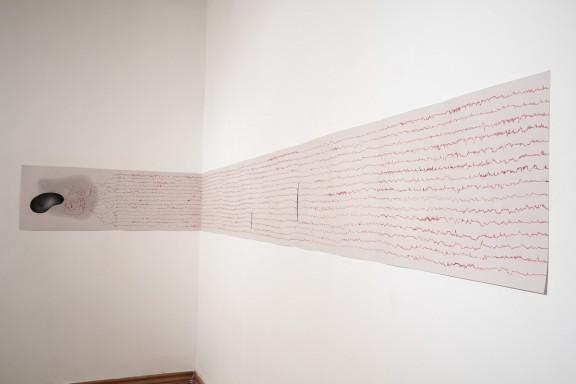 """Dorora Buczkowska, widok wystawy""""Cielesne kontinuum"""", 13 muz Szczecin, fot. Piotr Miazga (źródło: materiały prasowe organizatora)"""