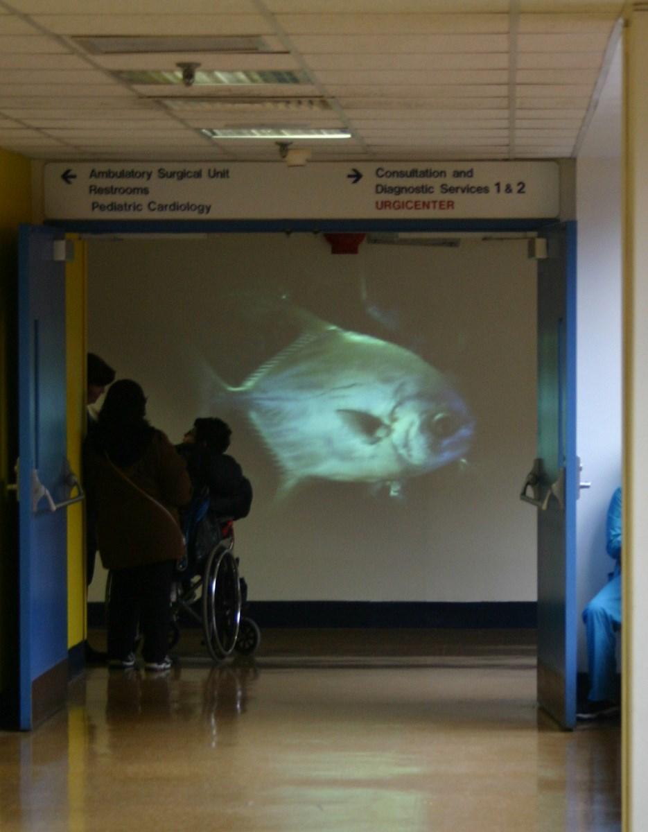"""Fot. Dominik Lejman, """"Krajobraz małych spektakli"""", Schneider's children Hospital, Nowy Jork (źródło: materiały prasowe organziatora)"""