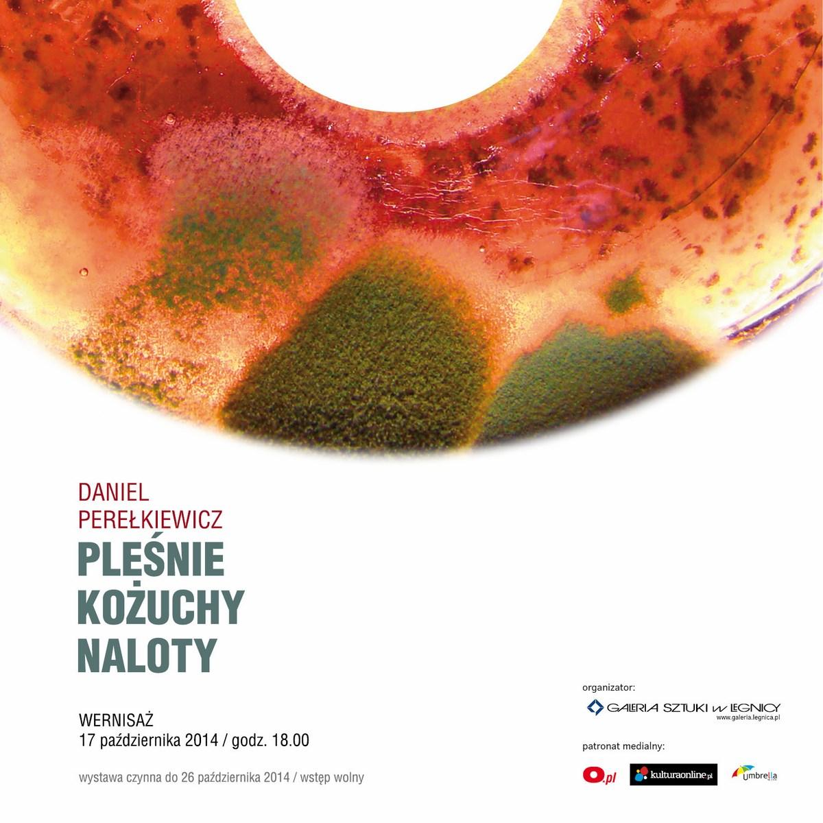 """Daniel Perełkiewicz, """"Pleśnie, kożuchy, naloty"""", plakat wystawy, Galeria Sztuki w Legnicy (źródło: materiały prasowe organizatora)"""