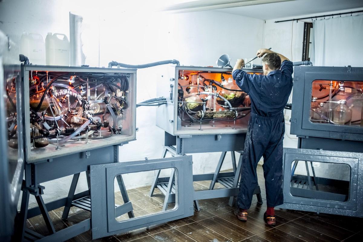 """Elvin Flamingo, """"Symbiotyczność tworzenia"""", część 1, """"Rekonstrukcja Nie-ludzkiej kultury. Otwarte inkubatory"""", fot. Szlaga (źródło: materiały prasowe organizatora)"""