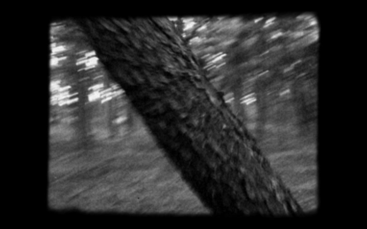 """Konrad Kuzyszyn, """"Urywki"""", klatka z filmu (źródło: materiały prasowe organizatora)"""