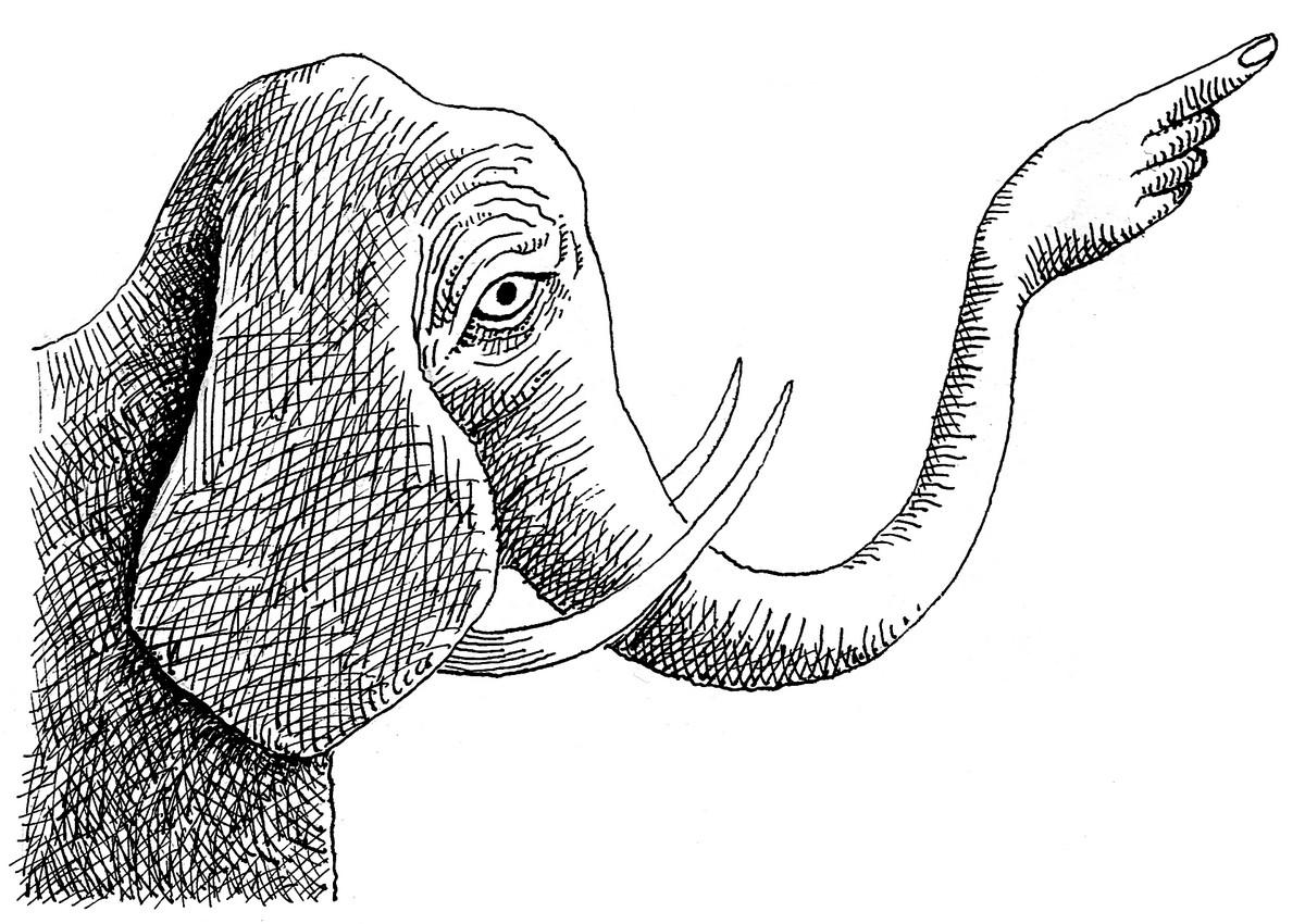 Daniel Mróz, Rączka-słoń (źródło: materiały prasowe)