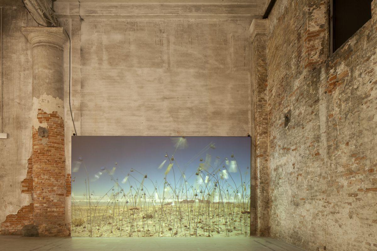"Christian Bolatanski, ""Animitas"", Venice Biennale Installation 2015 (źródło: materiały prasowe)"