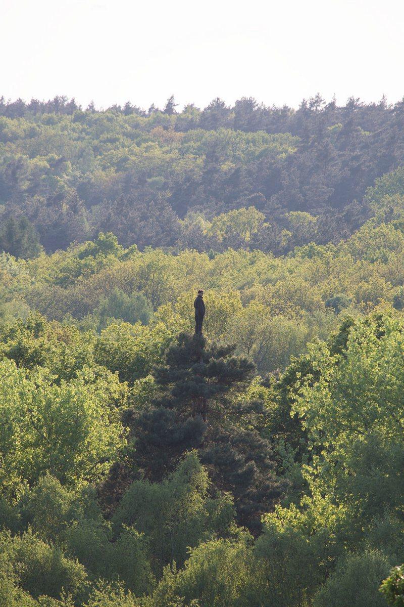"Christoph Both-Asmus, ""Tree Walker. A Moment in Time"" (źródło: materiały prasowe)"