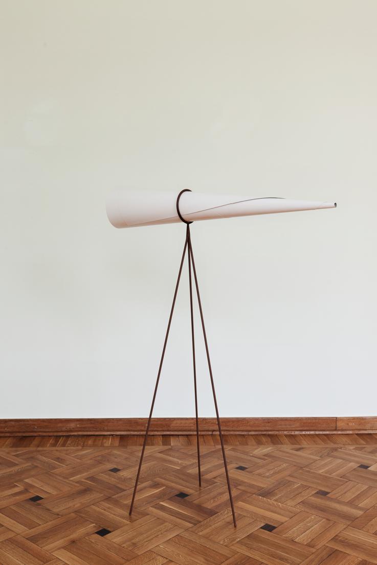 """Iza Tarasewicz, """"Tuba kumulacyjna"""", 2011, dzięki uprzejmości artystki i BWA Warszawa. Fot. Piotr Żyliński (źródło: materiały prasowe organizatora)"""
