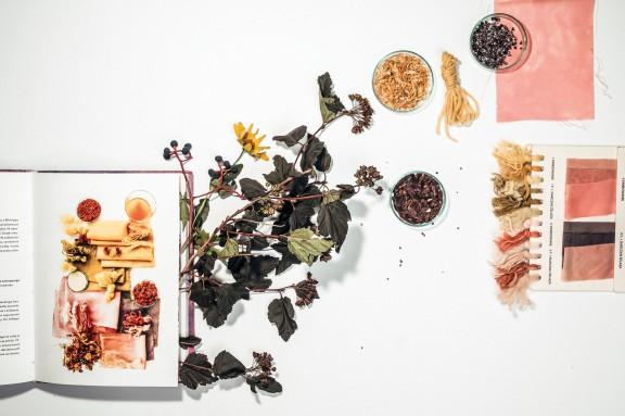 """Joanna Pieczyńska, """"Z natury"""", przykład farbowania krokoszem barwierskim (źródło: materiały prasowe organizatora)"""