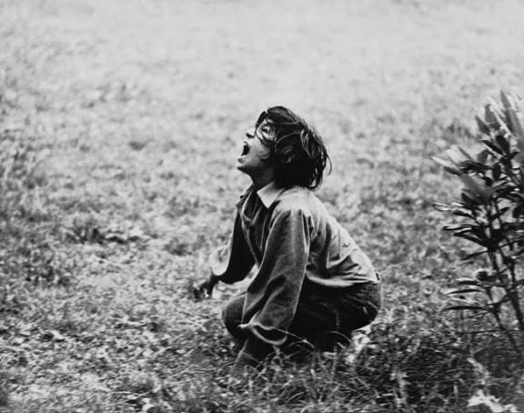 """Anna Panek, """"Dzikie życie"""", 2017, dzięki uprzejmości artystki (źródło: materiały prasowe organizatora)"""