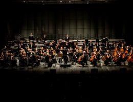 Toruńska Orkiestra Symfoniczna, fot. Tomasz Berent (źródło: materiały prasowe organizatora)