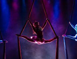 Aerial. 40. Europejska Konwencja Żonglerska (źródło: materiały prasowe organizatora)