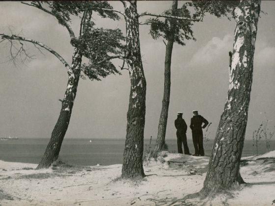 """""""Nad morzem"""", Jerzy Dygasiewicz, fot. © Muzeum Narodowe w Gdańsku (źródło: materiały prasowe organizatora)"""