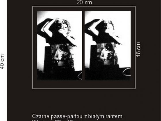 "Jolanta Marcolla, ""Passe-partou"" (źródło: materiały prasowe organizatora)"