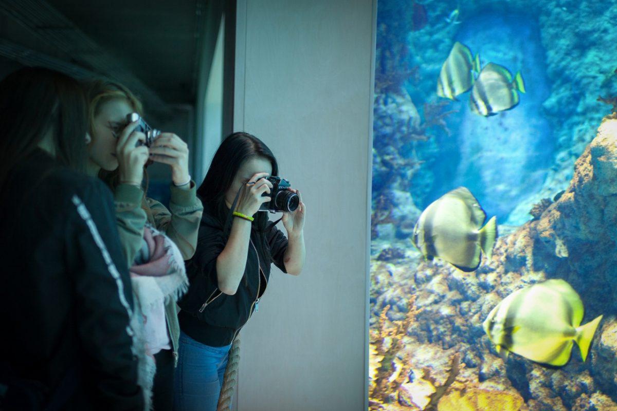 Dziewczyny w działaniu, fot. Alicja Kielan (źródło: materiały prasowe organizatora)
