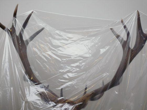 """Assaf Gruber """"Ewidentne rzeczy"""", 2018, kadr z filmu (źródło: materiały prasowe organizatora)"""