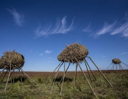 8. Land Art Festiwal, Jan Sajdak (źródło: materiały prasowe organizatora)