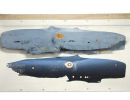 """""""Oikos-..."""", """"Poszukiwanie wieloryba"""", Dariusz Kaca (źródło: materiały prasowe organizatora)"""