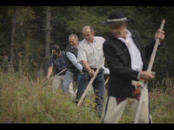 """Hubert Czerepok, """"Ekosystem"""", film, projekt """"Schronienie"""", 2014, fot dzięki uprzejmości artysty (źródło: materiały prasowe organizatora)"""